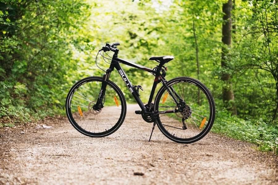 Blütenhotel Fahrradverleih 900x600